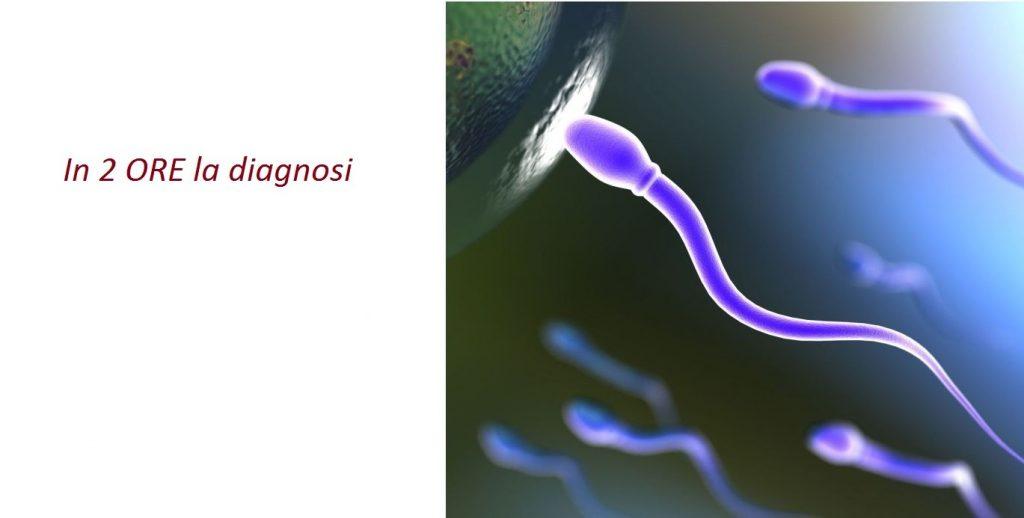 Artemisia, centro di andrologia, centro di seminologia, numero verde 800300100, spermiogramma, impotenza, deficit di erezione, doppler testicolo, spermatozoo (2)