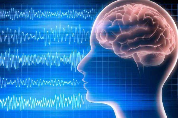 elettroencefalogramma - cervello studiato attraverso l'elettroencefalogramma