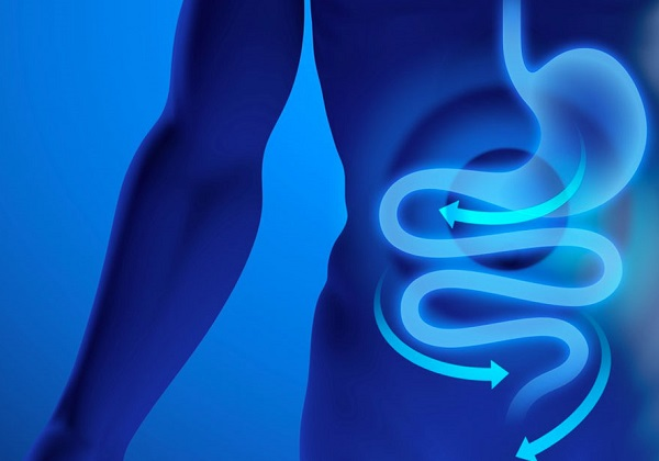 Gastroenterologia visita gastroenterologo